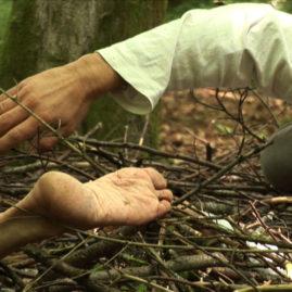 Danza Sensibile 'La Foresta'